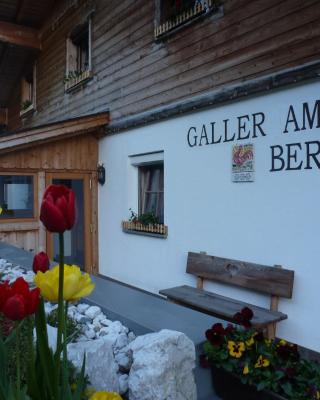 Galler am Berg