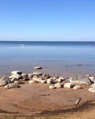 Apartments Melnalkšņi