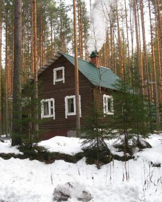 Hirvi Lodge