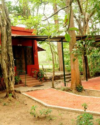 Bamboo Banks Farm & Guest House