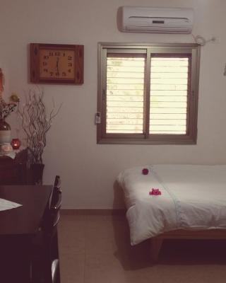 Zimmer Dora