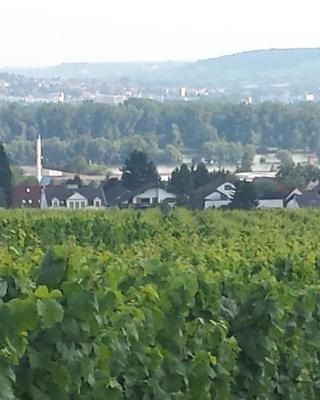 Ferienwohnung Weingut Leis