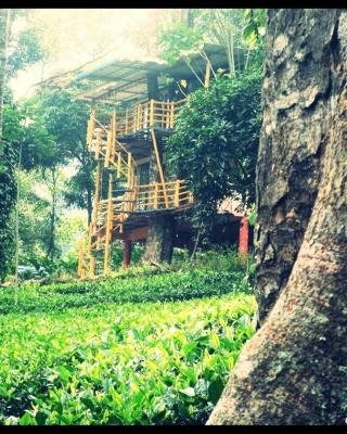 Jungle Jive Tree House Munnar