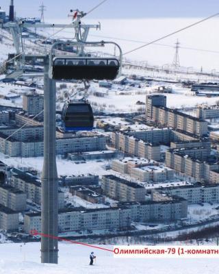 Apartaments on Olimpijskaya