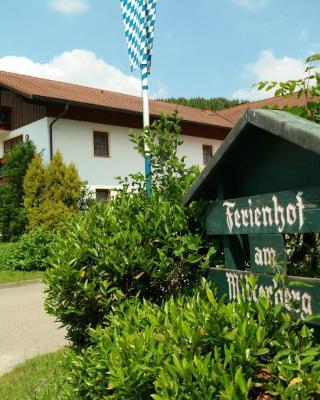 Ferienhof am Mitterberg