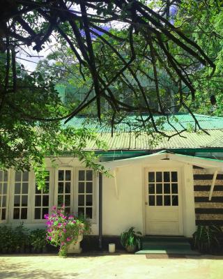 Surrey Bird Sanctuary & Holiday Resort