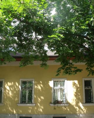 Adalbert Ház