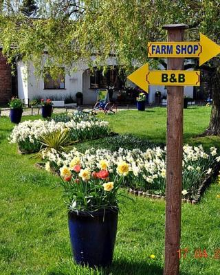 Model Farm B&B
