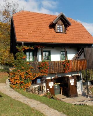 Country house Etno kuća pod Okićem