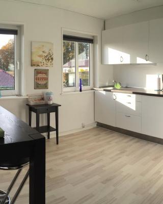 Vejle Apartment Skovhøjen