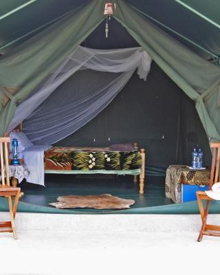 Fisi Camp