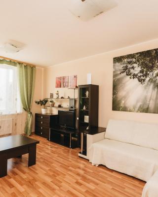 """""""SelimVseh"""" Apartment at Sheynkmana"""