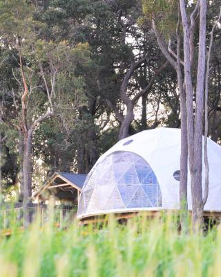 Mile End Glamping Pty Ltd