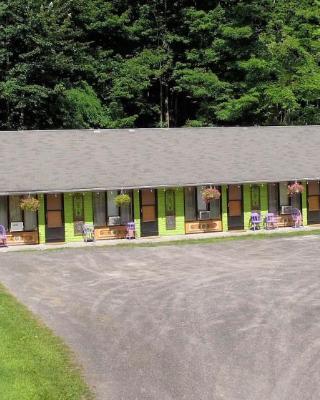 Starlite Motel & Suites
