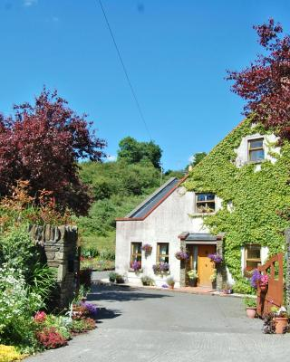 Tinnycross House B&B