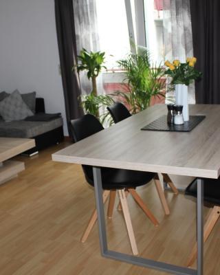 Apartment Schiller