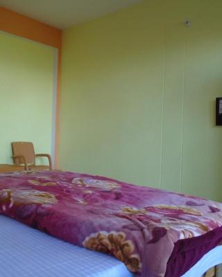 Gopal Binsar Retreat
