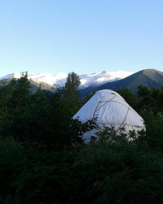 Bel-Zhan Yurt Lodge