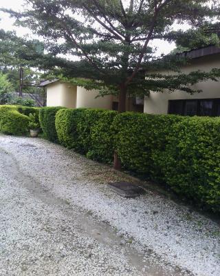 Zebra Guest House