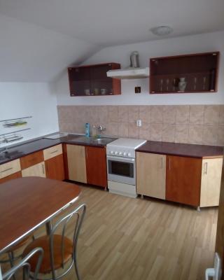 Casa Tomescu