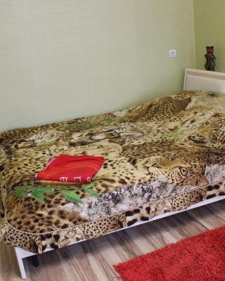 Apartment on Kirova d.34