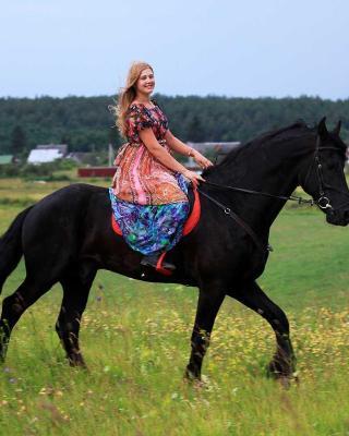 Inn First Horse