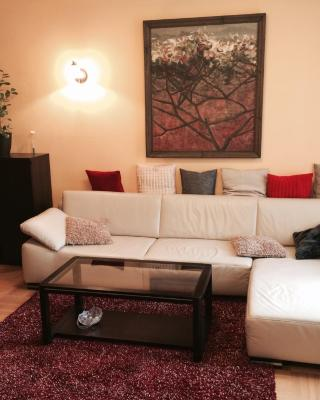 Luxury Dana's City Centre Apartment