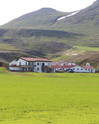 Dæli Farm Guesthouse B&B