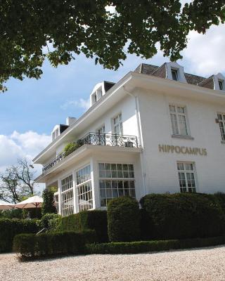 Hotel Hippocampus