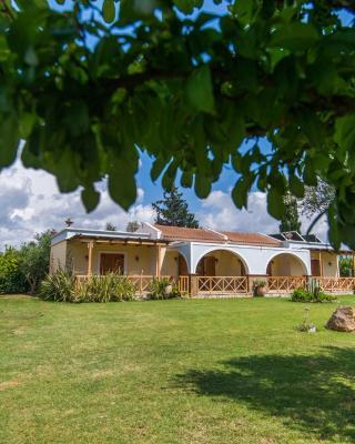 Trikalioti's Estate