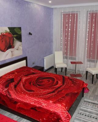 Elit Apartments on Shashkevycha