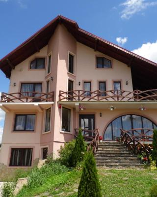 Casa Miruna