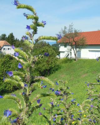 DerDieDas Wohnen - Der Bauernhof