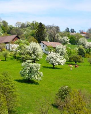 Ferienwohnung Vonwald