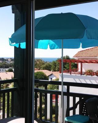 Appartement climatisé vue sur mer