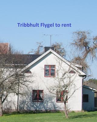 Tribbhult