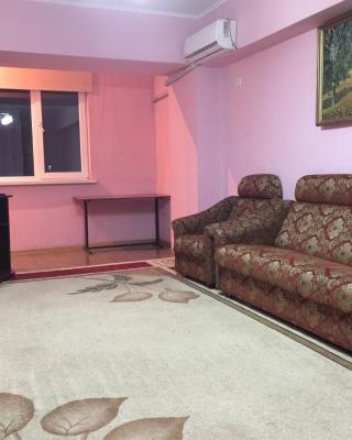 Bishkek Apartment Central