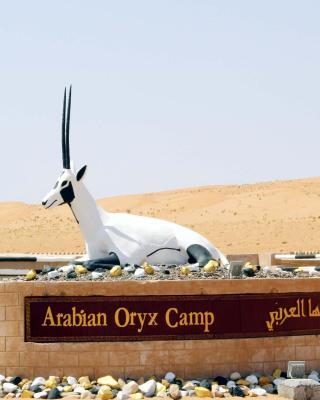 アラビアン オリックス キャンプ