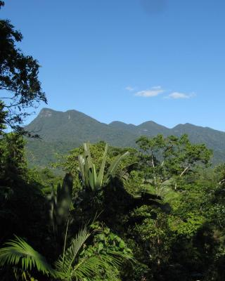 Mossman Gorge Bed and Breakfast