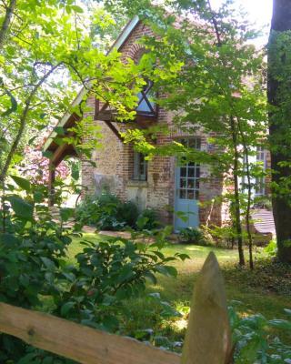 La cabane à Chouette