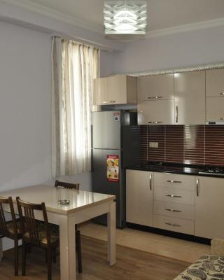 Apartments Anzor