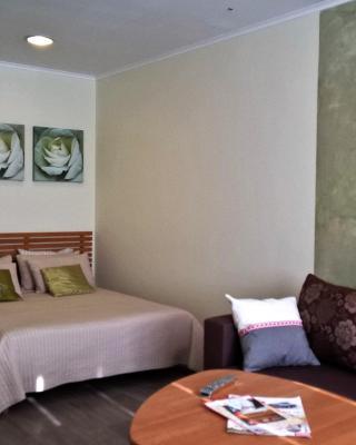 Comfort Apartment na Kurganskaya