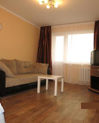 Apartments on Aviatsionnaya ulitsa