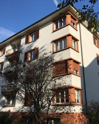 Newly Furnished Apartment in Zurich