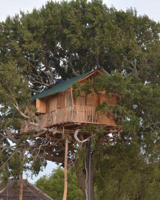 Yala Dream Park