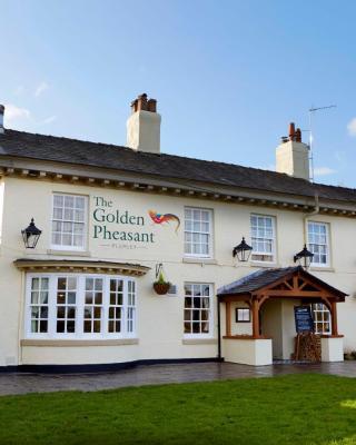 The Golden Pheasant