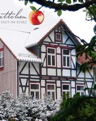 Harzhaus Schneewittchen
