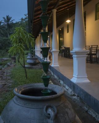 Explore Sinharaja Rain Forest Tour Camp