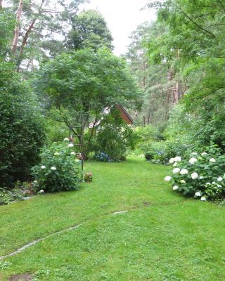 Kastavengrund - Ferienhaus Annabelle mit Kamin