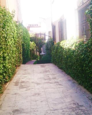 House Wonderful Hostel La Paz